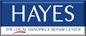 Hayes Handpiece Repairs